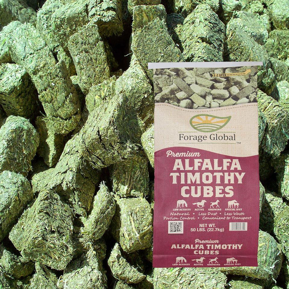alfalfa timothy cubes forage global